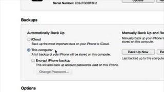 How To Back Up IPhone Contacts With ITunes : ITunes Help