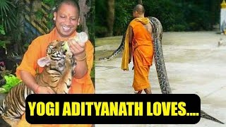 Yogi Adityanath with monkey, tiger, snake- pictures go vir..