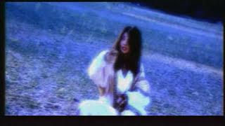 Смотреть или скачать клип Шахзода - Бахт булади