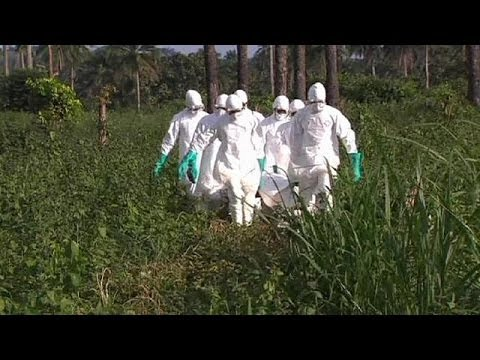 WHO considers emergency action on Ebola outbreak