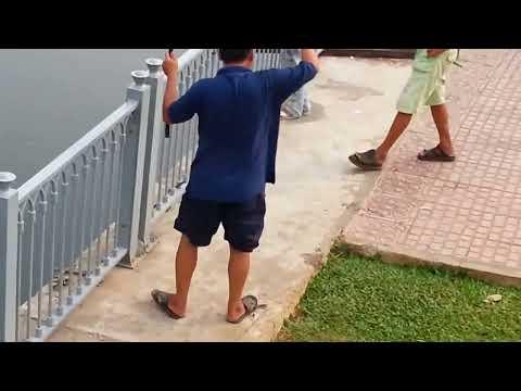 Xem câu cá trên kênh Nhiêu Lộc