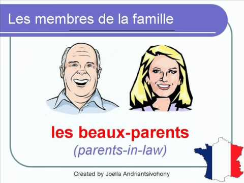 French Lesson 38 - Les membres de la famille (Family members - Miembros de la familia)