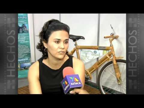 Bicicletas de bambú en beneficio del medio ambiente
