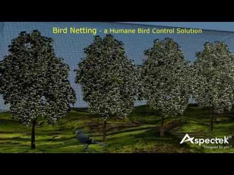 Bird Netting by Aspectek - a humane bird control solution