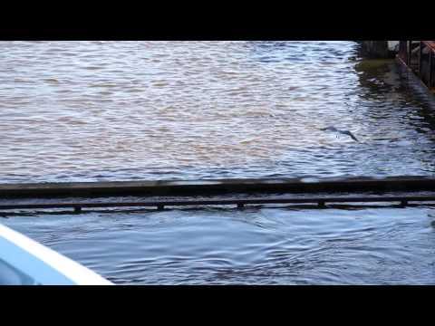 дата открытия рыбалки на лодках