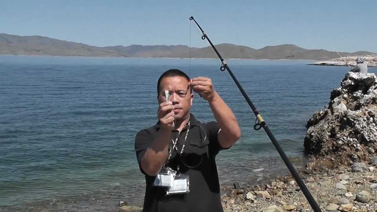 Fishing tips how to cast easier with that long leader for Fishing line leader