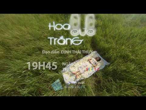 HOA CÚC TRẮNG SCTV14 TRAILER