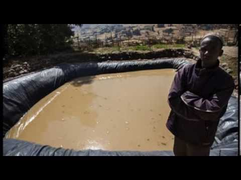 Ethiopian farmers use water harvesting techniques to fight climate change