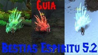 World Of Warcraft Mascotas De Cazador : Bestias De