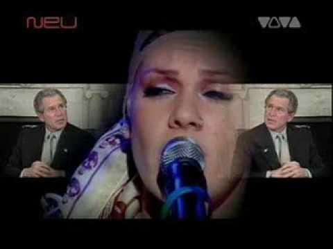 pinks song dear mr president