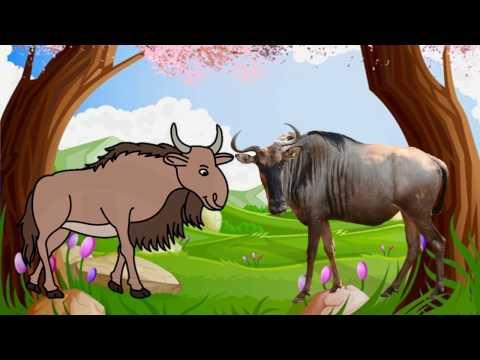 Dạy bé học các con vật tiếng việt | em tập nói hình ảnh tiếng kêu động vật | Dạy trẻ thông minh sớm