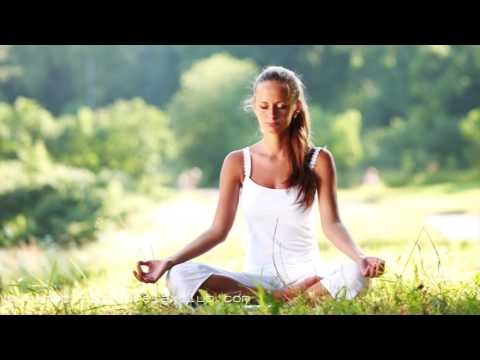 8 HOURS Meditation Tunes No Stop for Relaxation Meditation, Zen Music, Nature Sounds