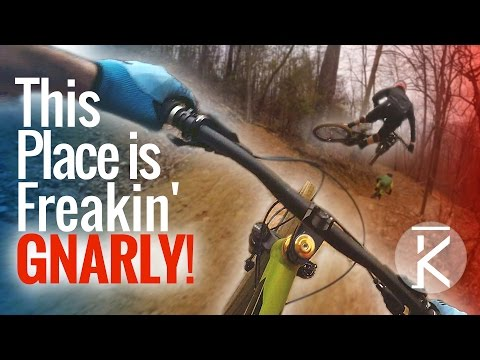 Downhill MTB in Tennessee?! Windrock Bike Park means business.
