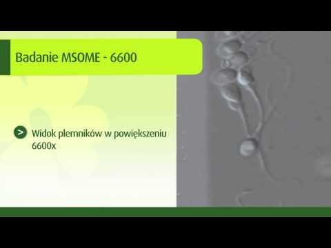 Badanie MSOME 6600