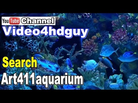 aquarium screensaver HD TV art4hd 1080 video