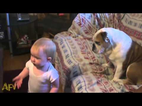 tapchichomeo.com-Bé cãi nhau với chó - Siêu đáng yêu ^^
