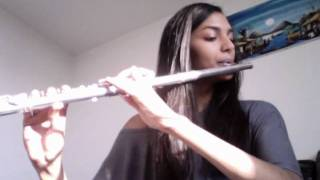 Someone Like You Adele Flute Cover