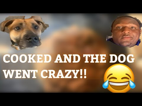 COOKING WITH FUNNYRAT PART 2!!!!!!!! (EXTREMELEY FUNNY) #FUNNYRAT #FUNNY RAT