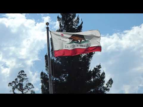 California Bear Flag Flying
