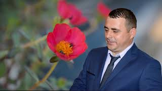 SORINEL DE LA PLOPENI   - ARE PASAREA DOI PUI NOU 2018