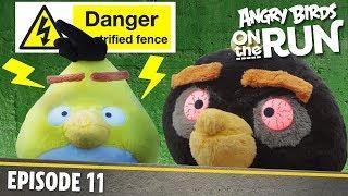 Angry Birds On the Run - Zapped Chuck - S1 E11