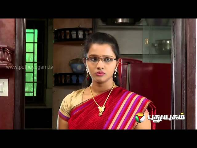 Agni Paravai Serial - Episode 87