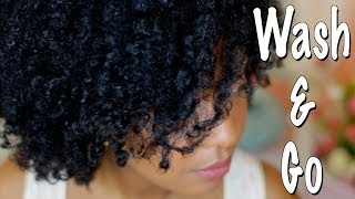 Quick & Easy Wash And Go Tutorial For Kinky Curly Coily