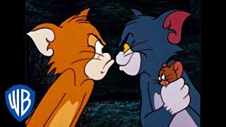 Tom a Jerry - Změna psa na kočku