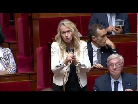 Mme Constance Le Grip - Candidature de Mme Sylvie Goulard
