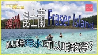 澳洲昆士蘭 Fraser Island 點解海水可以咁乾淨?