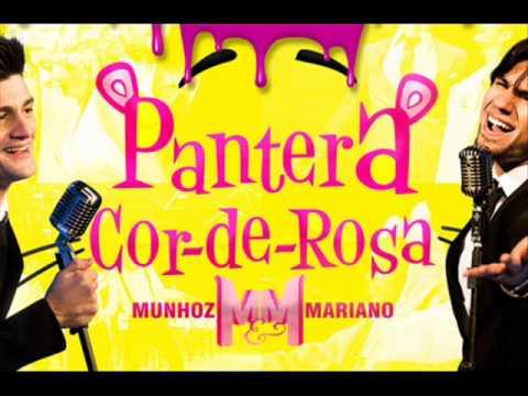 Pantera - Munhoz e Mariano Remix (DJ Fernando Mix sc )