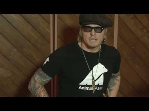 Matt Sorum: Please help support Animals Asia