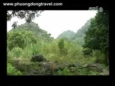 [VTC1] Hành Trình Du Lịch Hà Nam - Khám phá Kim Bảng P1
