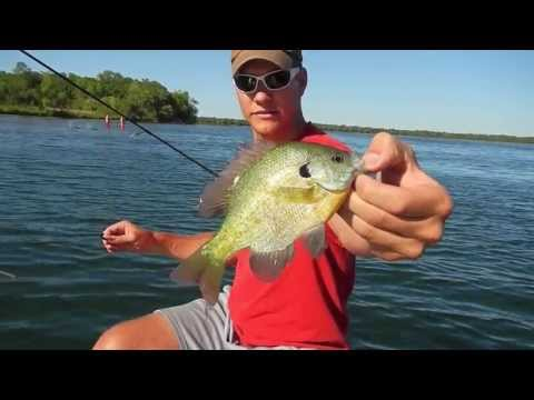Slip Bobber Rigs for Bluegill - Glendalough State Park (Annie Battle Lake)