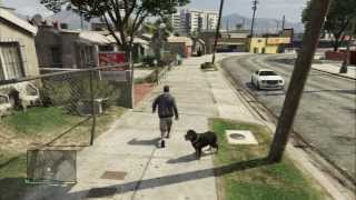 Grand Theft Auto V Chop: Play Catch & Walk Rottweiler