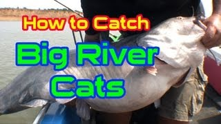 HUGE CATFISH: HOG HUNTIN ON THE OHIO RIVER
