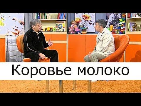 Коровье молоко: школа доктора Комаровского