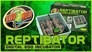 ReptiBator® Digital Egg Incubator