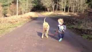 Bebé lleva a pasear a su perro