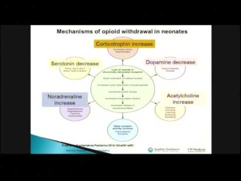 Neonatal Abstinence, Part 1: Incidence, Pharmacologic Management and Outcomes