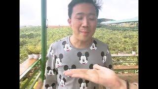 """Trấn Thành Phiên Bản  ĐỂ CẰM LÊN TAY SIÊU BỰA Làm Hari Won Tức Giận  """"Halu Halu"""""""
