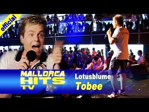Tobee - Lotusblume