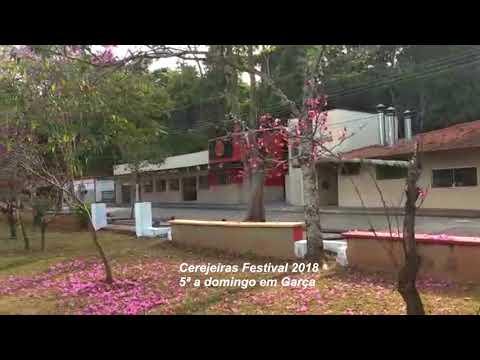 Cerejeiras Festival 2018: atração em Garça