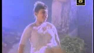 Pallavi Very Hot Erotic White Wet Transparent Song