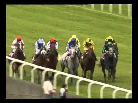 Race Night Services Ltd - Flat Race