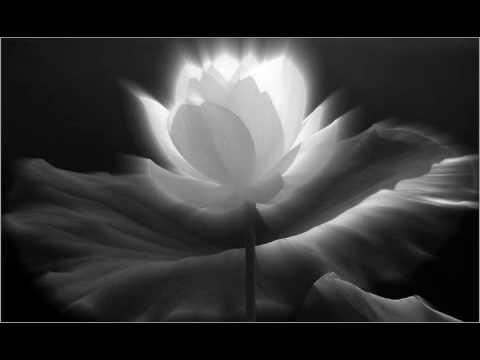 Thích Trí Thoát - Niệm Nam Mô A Di Đà Phật (Chanting) nhạc rất hay