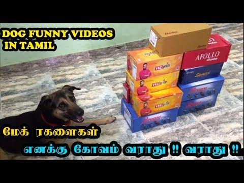 மேக் ரகளைகள் | எனக்கு கோவம் வராது !! வராது !!! | Funny Dog Videos in Tamil | Mac(k) Ragalaikal