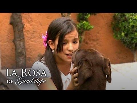 La rosa de Guadalupe | Un rastro de amor