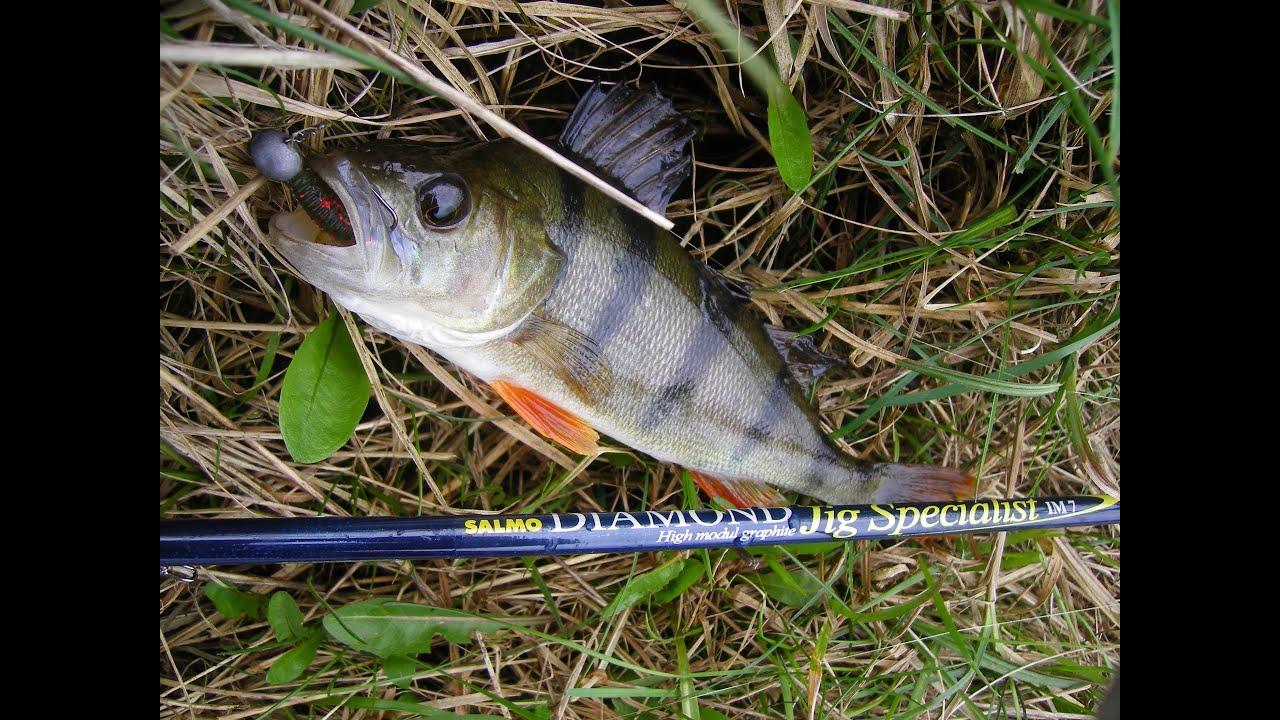 наша рыбалка ловим окуня