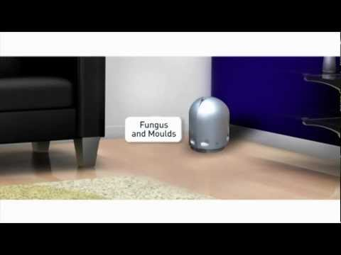 Airfree P60 Silent Room Air Purifier